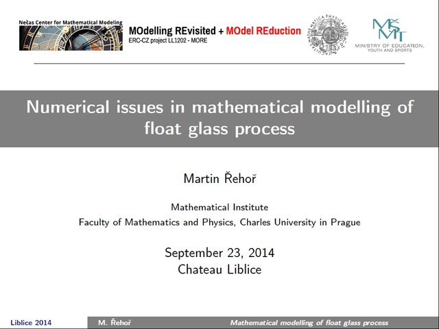 Martin Řehoř | NUMERICAL ISSUES IN MATHEMATICAL MODELLING OF