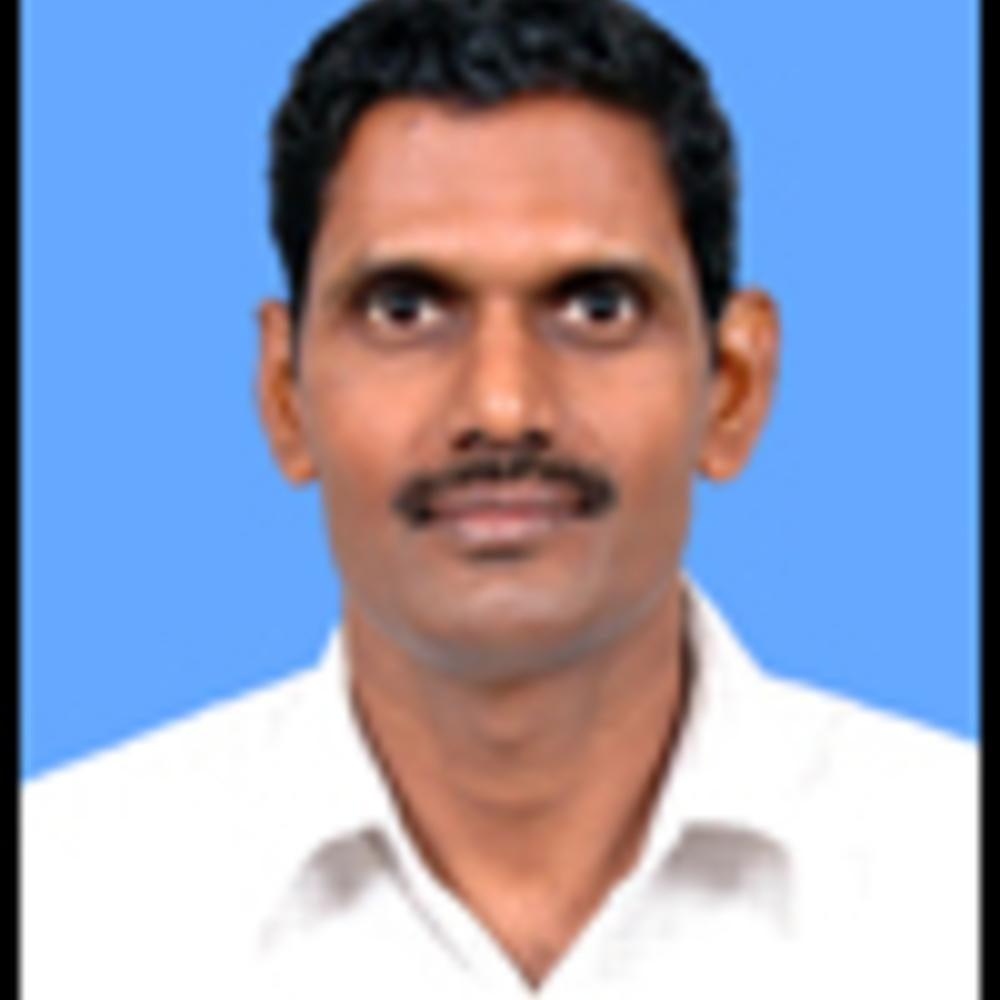 P.L.N. Raju