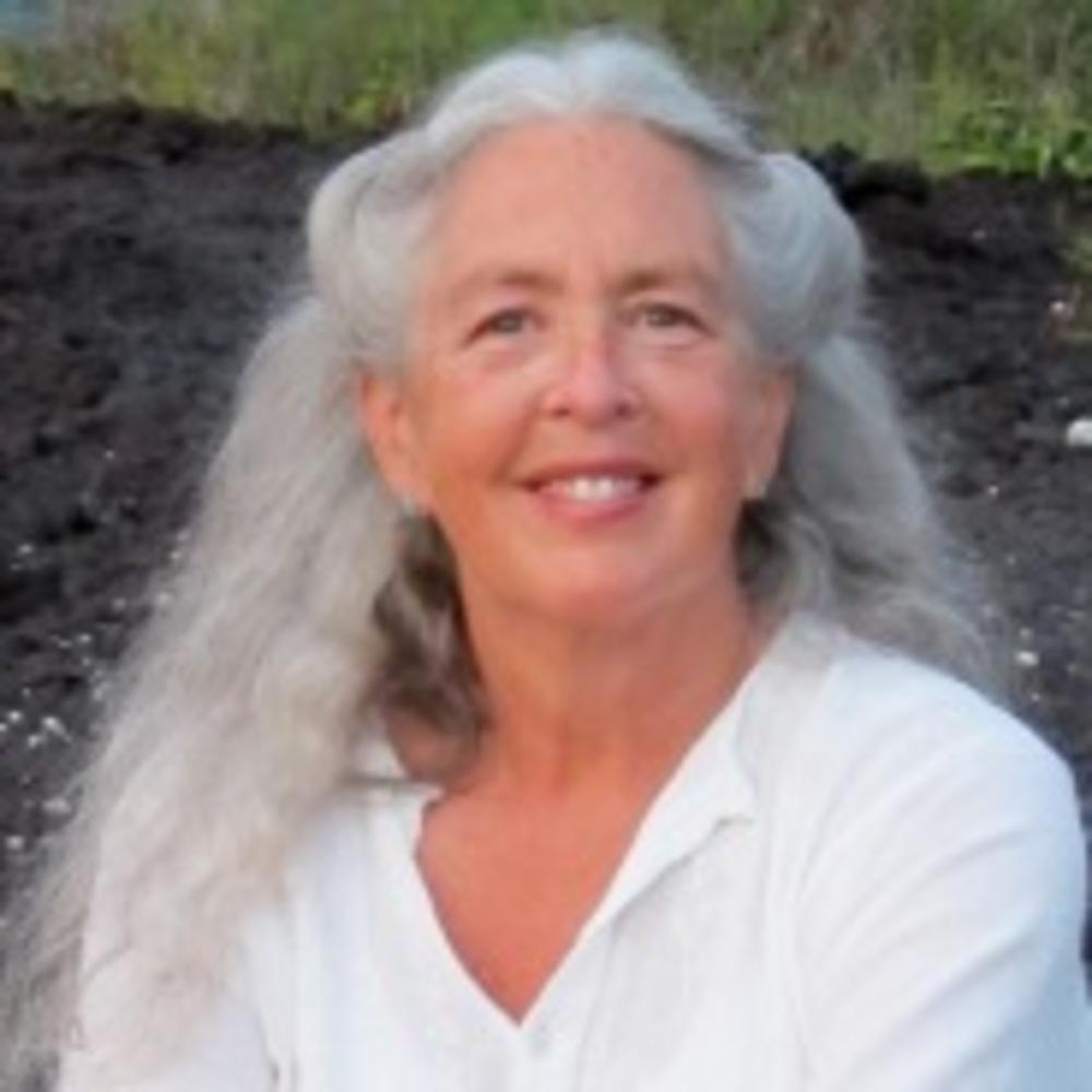 Diane Haug